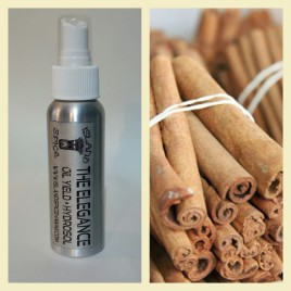 Cinnamon (2 Fl Oz) Spray Bottle