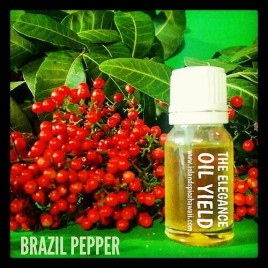 Brazil Pepper Essential Oil