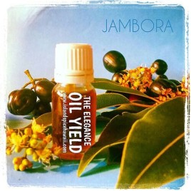 Jambora-Java Plum Essential Oil